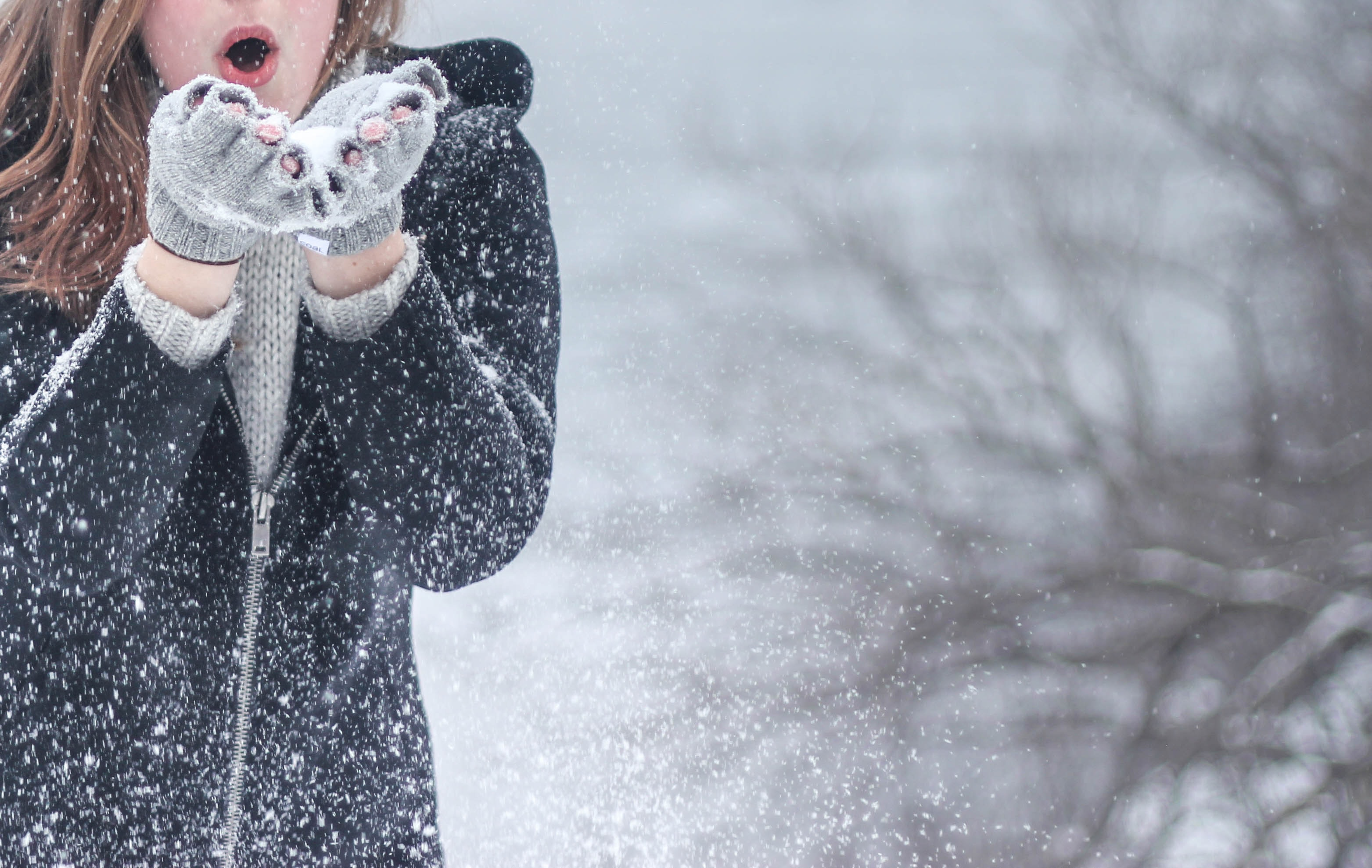 Bilderesultat for pic of winter
