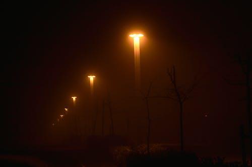 Free stock photo of espesa niebla, miedo, neblina