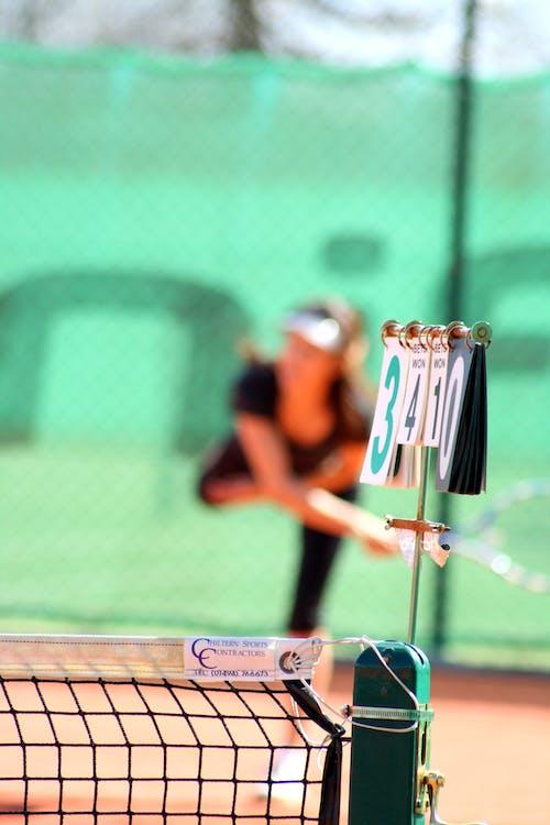 Free stock photo of net, tennis
