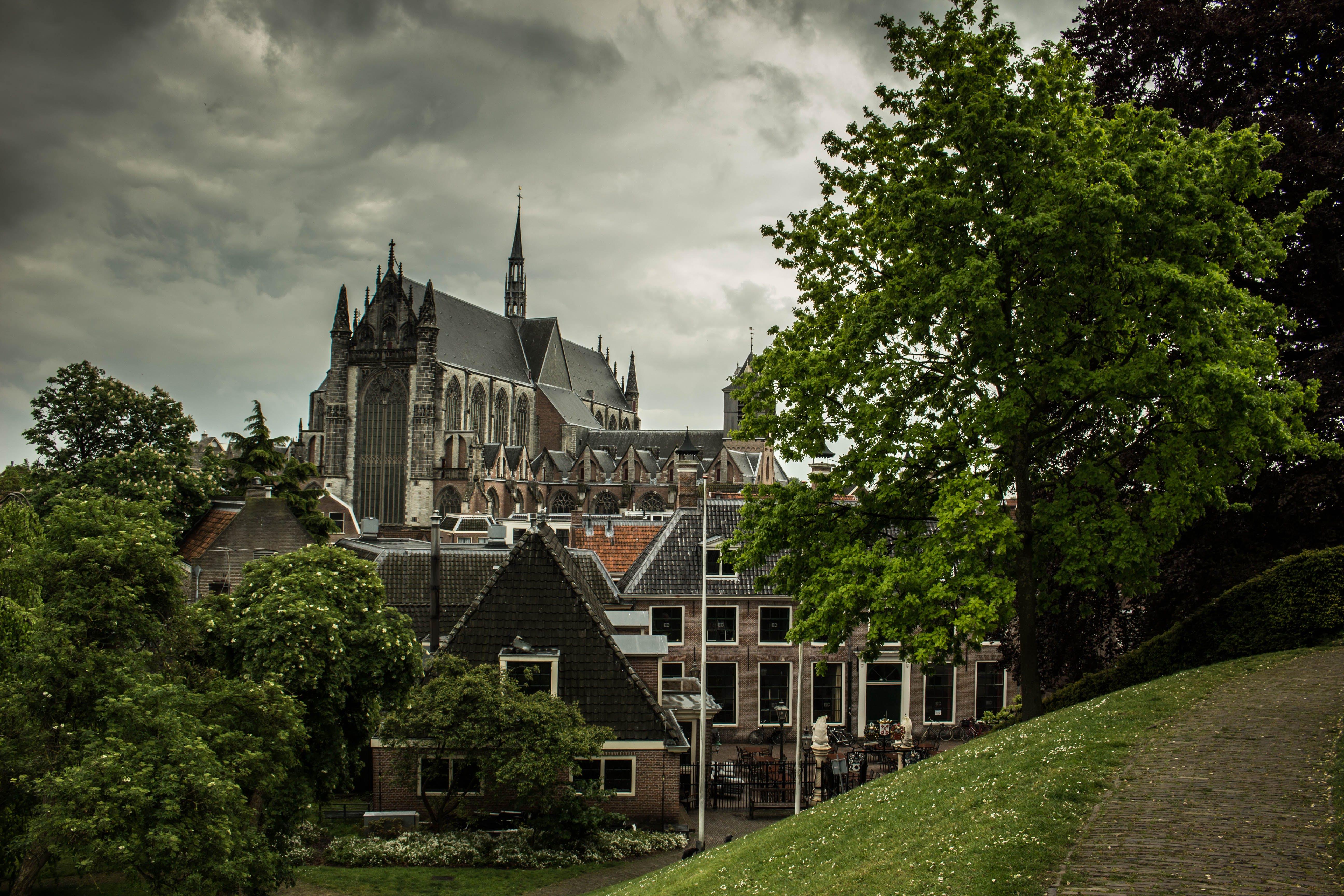 architecture, buildings, castle