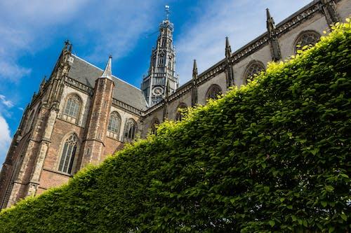 Imagine de stoc gratuită din arhitectură, biserică, clădire, Olanda