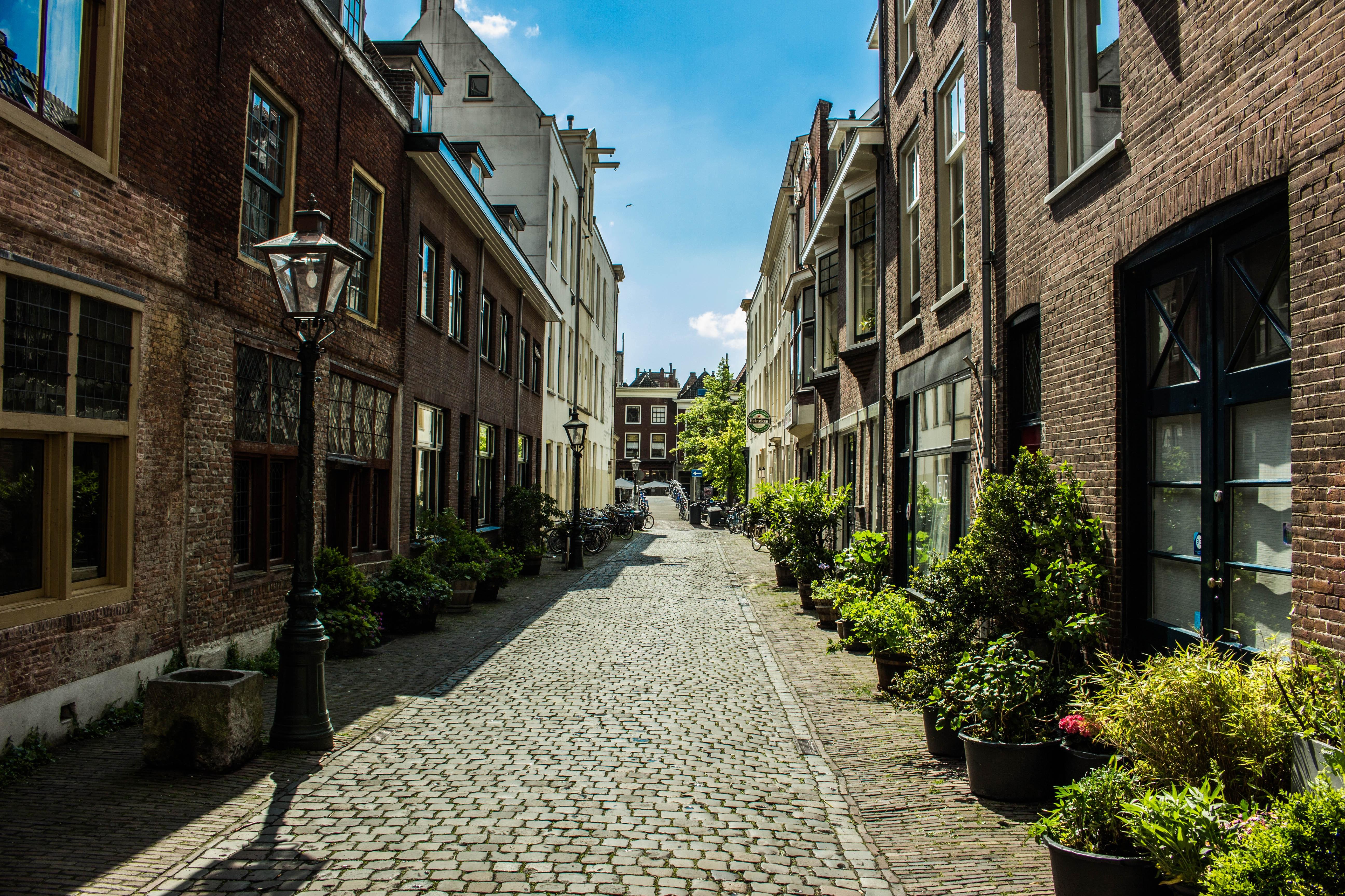 View Of City Street 183 Free Stock Photo