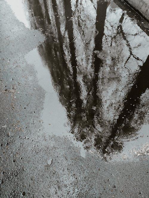 Puddle on asphalt road reflecting fence on rainy day