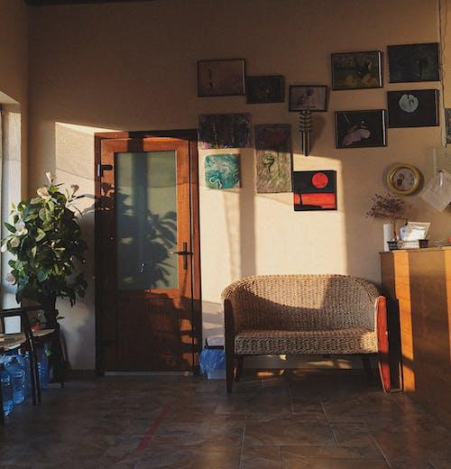 Darmowe zdjęcie z galerii z biurko, biuro, dekoracja