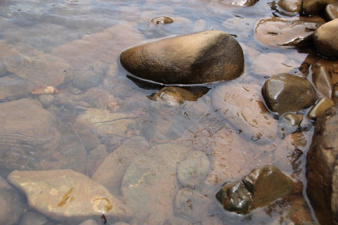 Gratis lagerfoto af overfladisk, sten