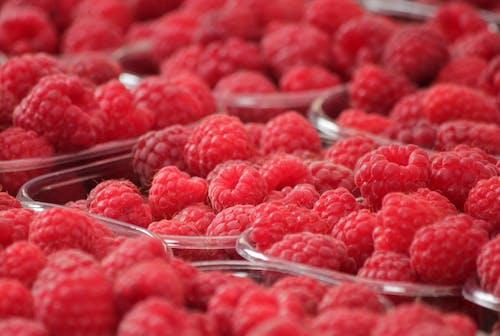Imagine de stoc gratuită din ciorchine, delicios, dulce, fructe