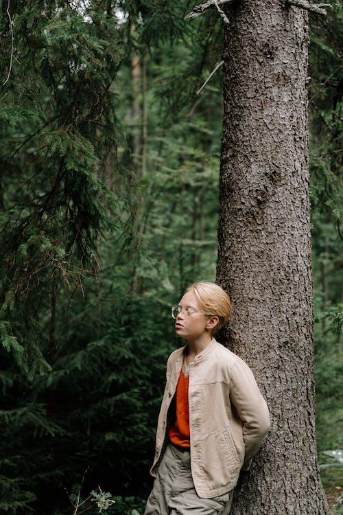 Foto d'estoc gratuïta de a l'aire lliure, adolescent, arbre, aventura