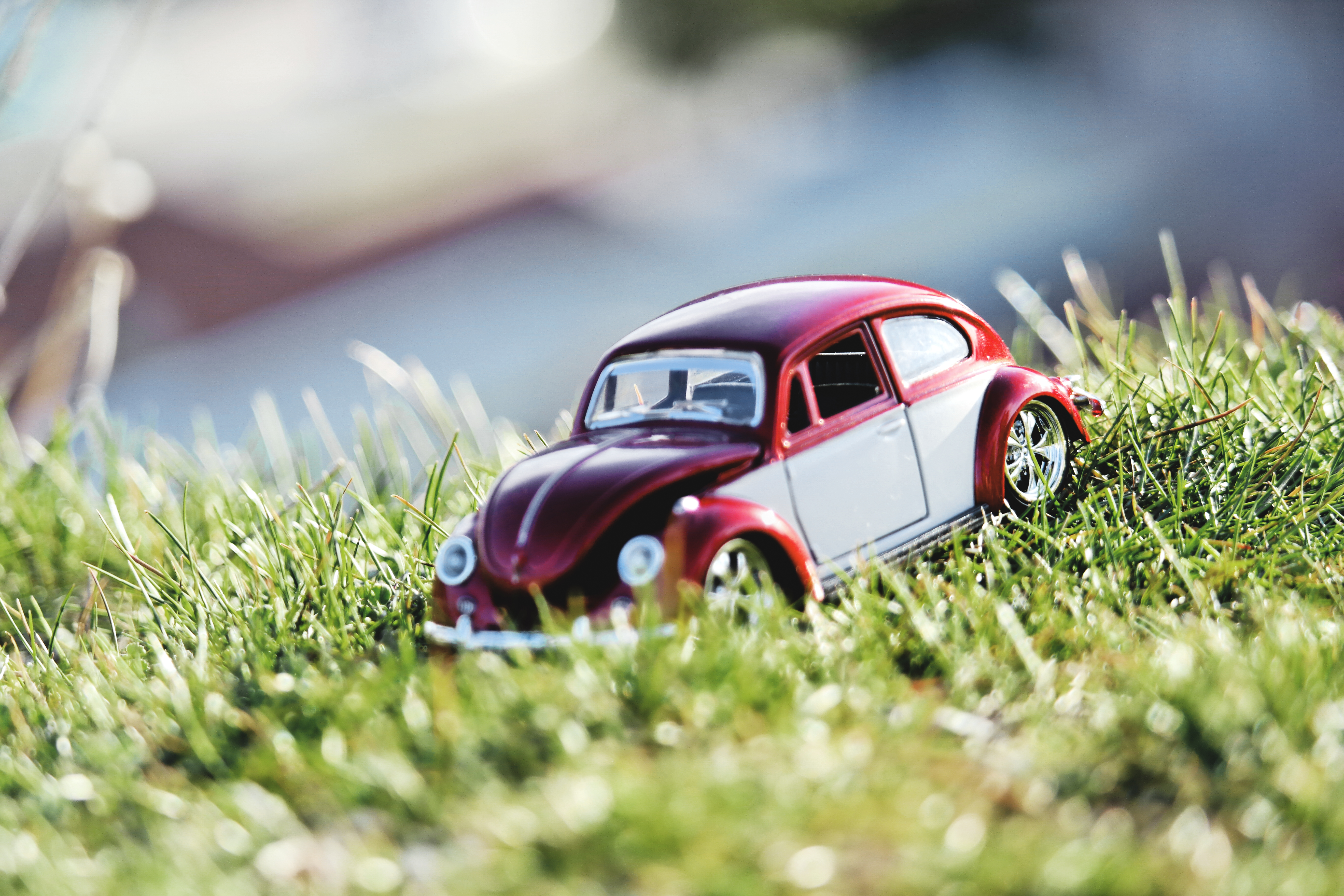 Red And White Beetle Car Toy On Grass Field In Bokeh Photography Free Stock Photo