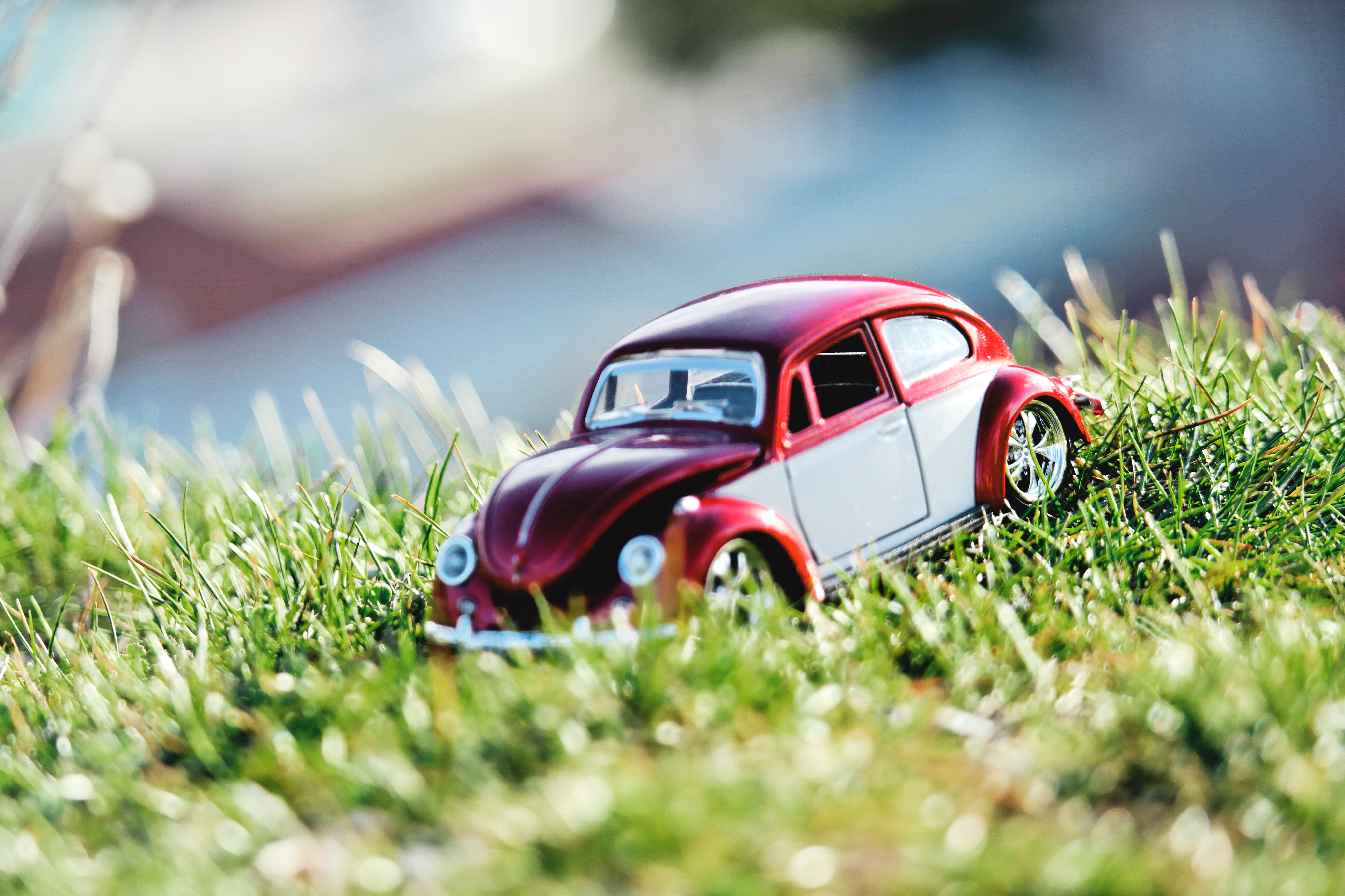 Red And White Beetle Car Toy On Grass Field In Bokeh