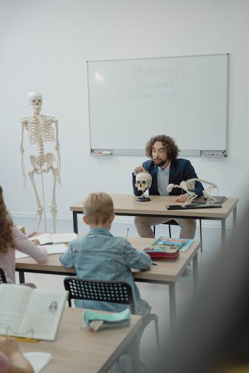 Gratis lagerfoto af barn, biologi, biologi lektion