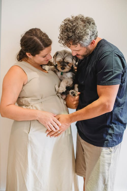 Smiling pregnant couple embracing dog and touching tummy near wall