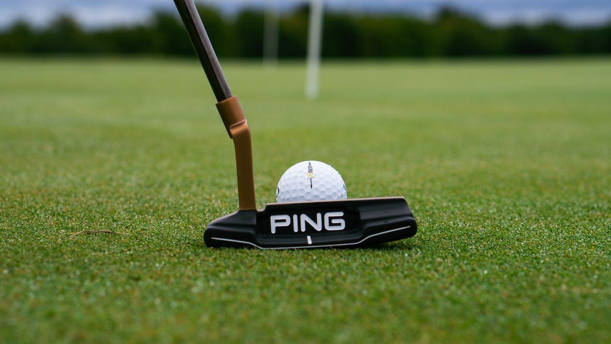 Безкоштовне стокове фото на тему «oncore vero x1, відпочинок, гольф»