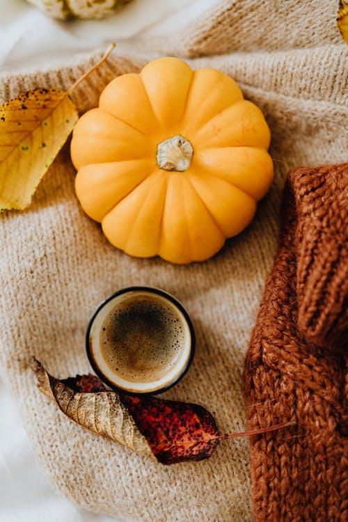 Photos gratuites de aliments, artisanal, automne, bois