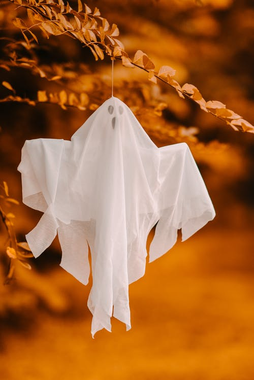 Small decorative ghost in white cape hanging on tree sprig on blurred background in autumn park during holiday celebration in daylight