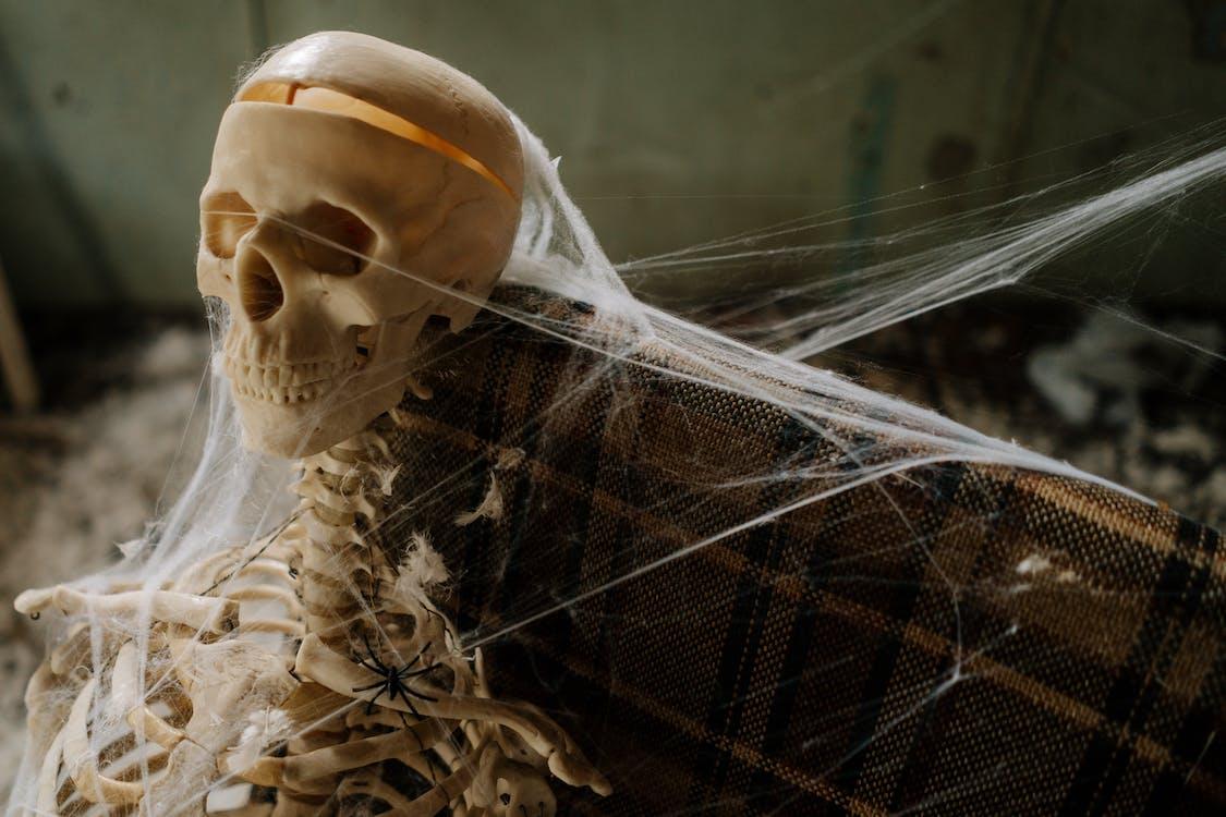 Skeleton Covered in Spider Web