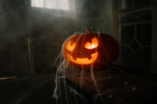 Jack O'Lantern Covered in Spider Web