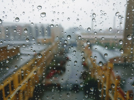 Free stock photo of water, blur, dew, rain