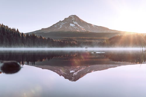 Amazing landscape of Mount Hood reflecting in Trillium Lake surrounded by lush coniferous trees against cloudless sky on sunny day in Oregon