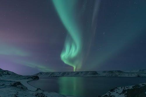 가벼운, 겨울, 경치, 녹색의 무료 스톡 사진