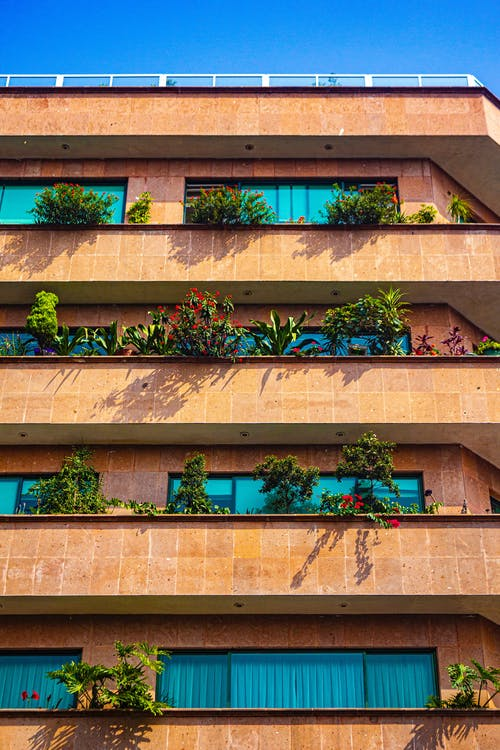 Modern building with plants on balconies