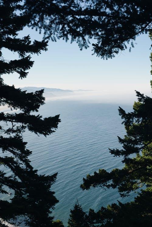 Free stock photo of blue, coast, fog, freedom