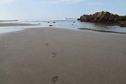 Free stock photo of beach, landscape, nikon