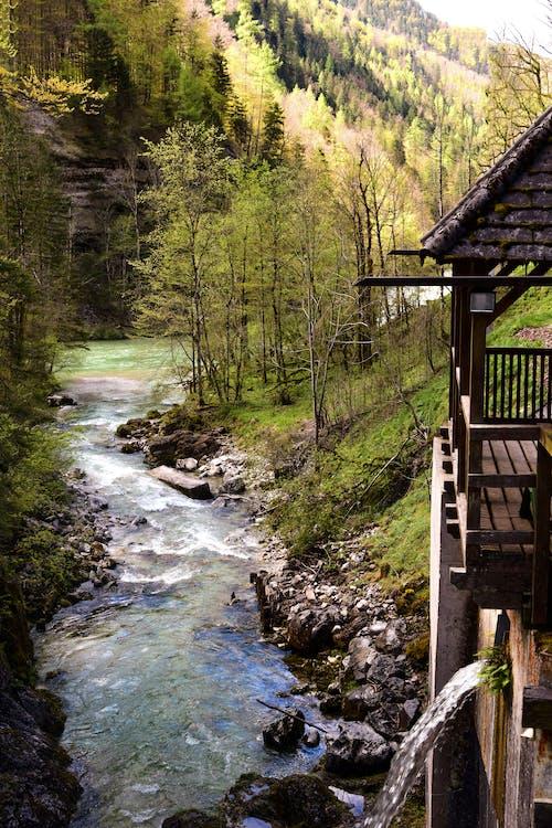 Gratis lagerfoto af å, bjerg, flod, flow