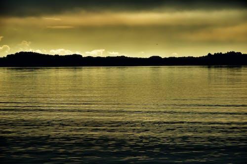 Foto stok gratis Jeruk, matahari terbenam