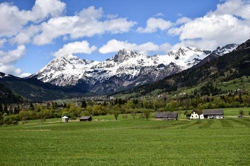 Foto stok gratis alam, alpine, awan, bidang