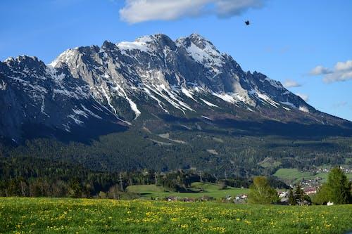 Kostenloses Stock Foto zu alpen, berge