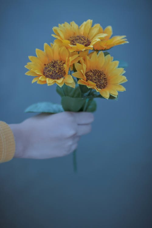 Person showing bright yellow flowers