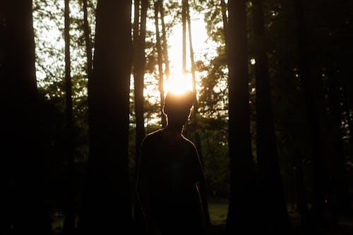 คลังภาพถ่ายฟรี ของ sunst, การท่องเที่ยว, การเดินทาง, ความลึกลับ