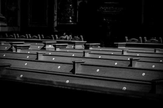 Free stock photo of wood, light, black-and-white, dark
