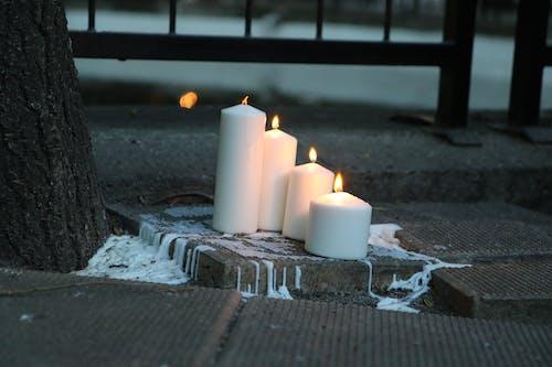 Foto profissional grátis de harmonia, lamparinas, leve, noite de verão