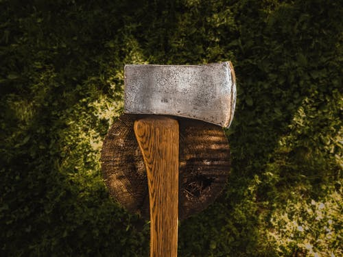 Brown Hatchet on Log