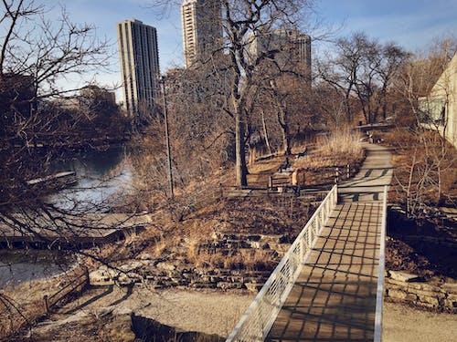 Darmowe zdjęcie z galerii z chicago, obszar miejski, park krajobrazowy