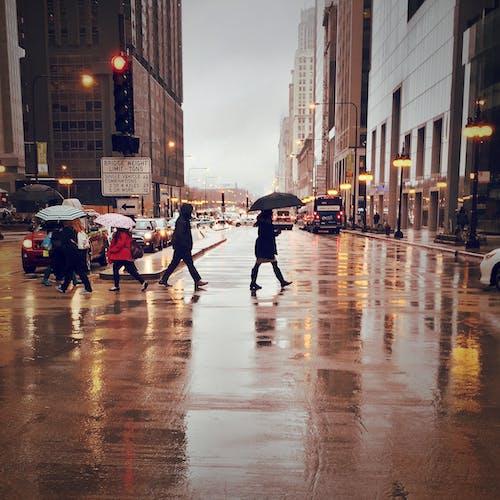 Darmowe zdjęcie z galerii z chicago, chodzenie, deszcz