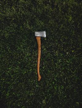 Free stock photo of grass, dangerous, green, axe