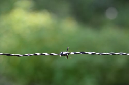 Selective Focus Photography Gray Link Wire Fence
