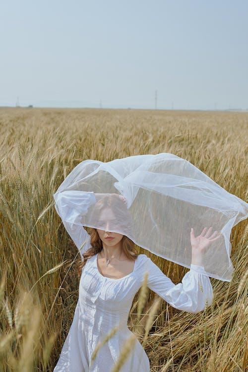 Serene trendy woman standing on field under waving white veil