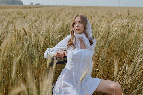 Stilvolles Weibchen Im Weizenfeld