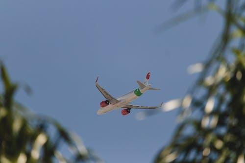 airbus, uçak içeren Ücretsiz stok fotoğraf