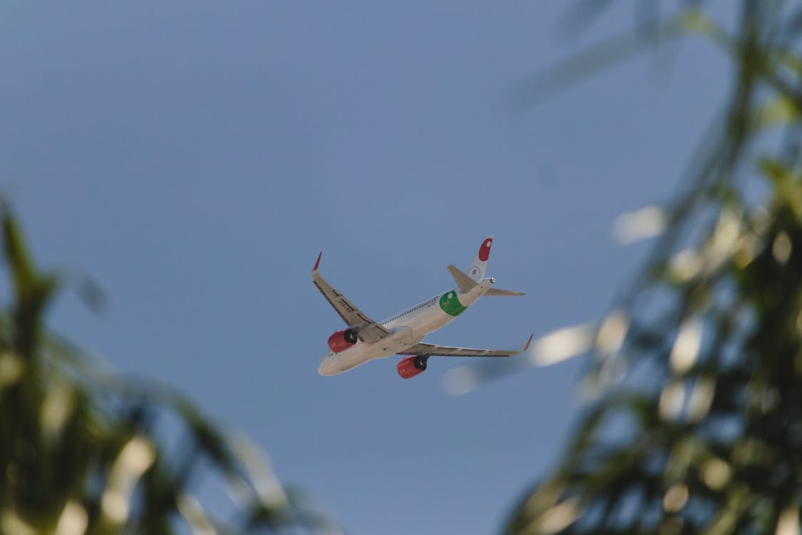 Free stock photo of airbus, airplane
