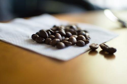 Gratis lagerfoto af baglygte, kaffebønner, makro, Se