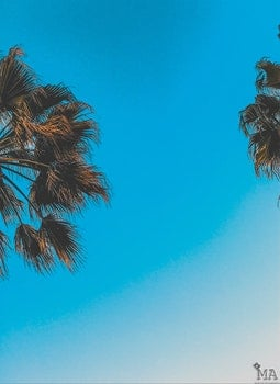 Free stock photo of nature, blue, summer, travel