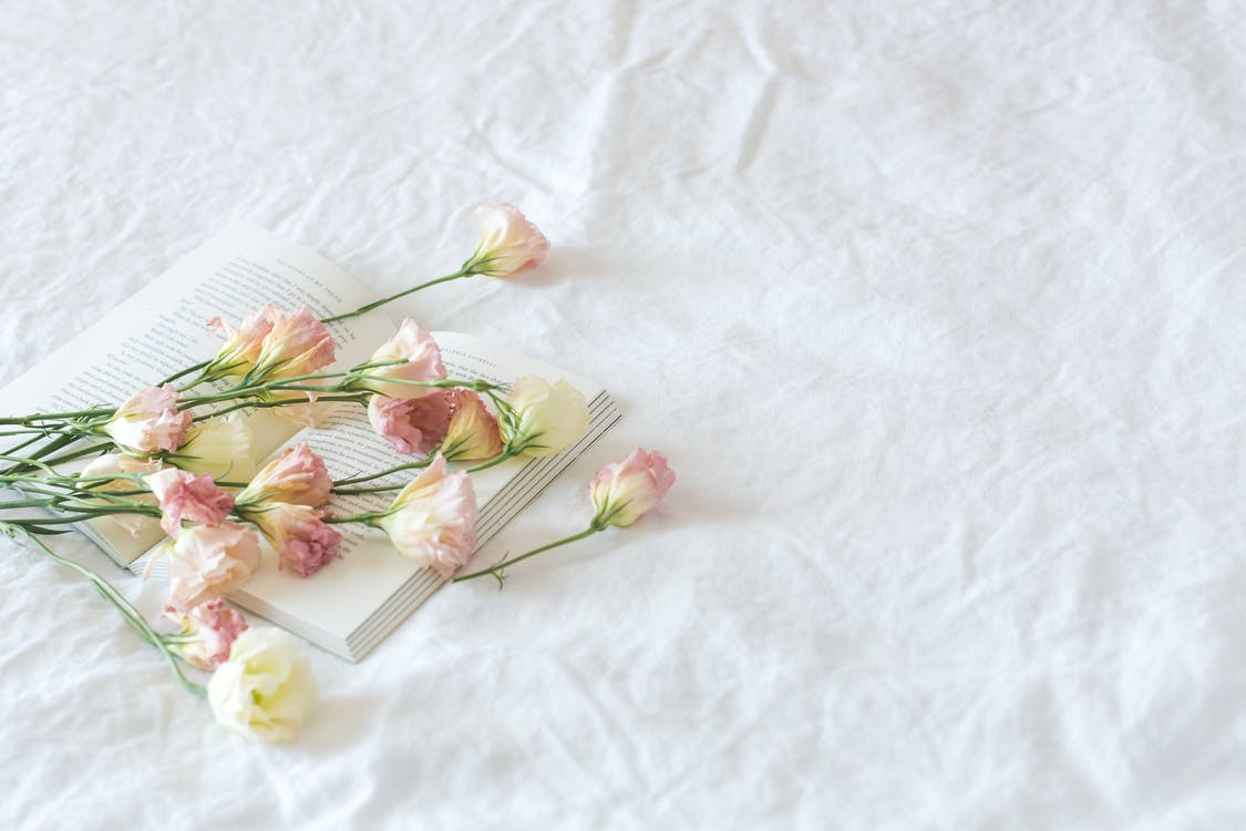 White and Pink Flowers Above Book