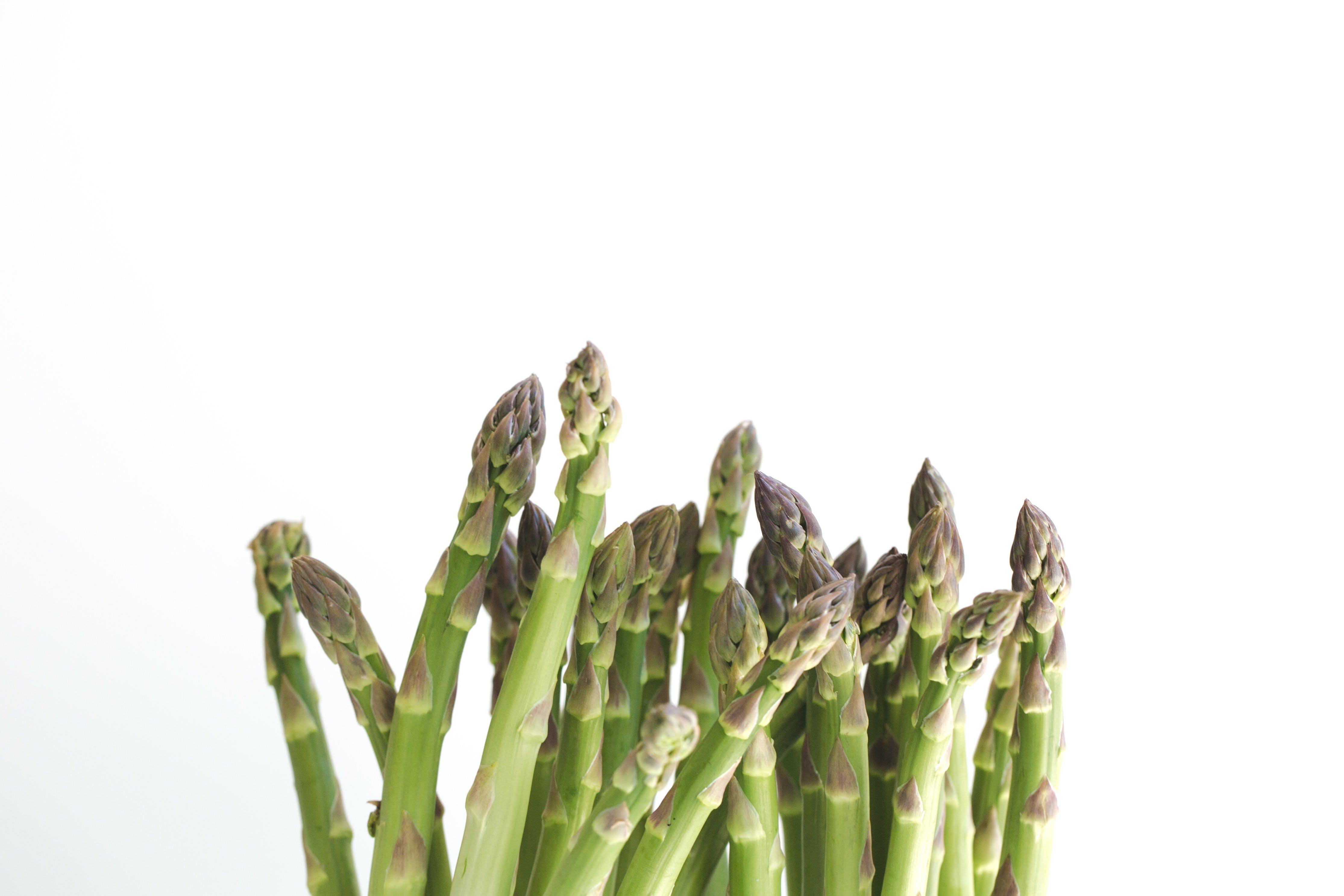 Foto stok gratis asparagus, merapatkan, sayur-mayur, segar
