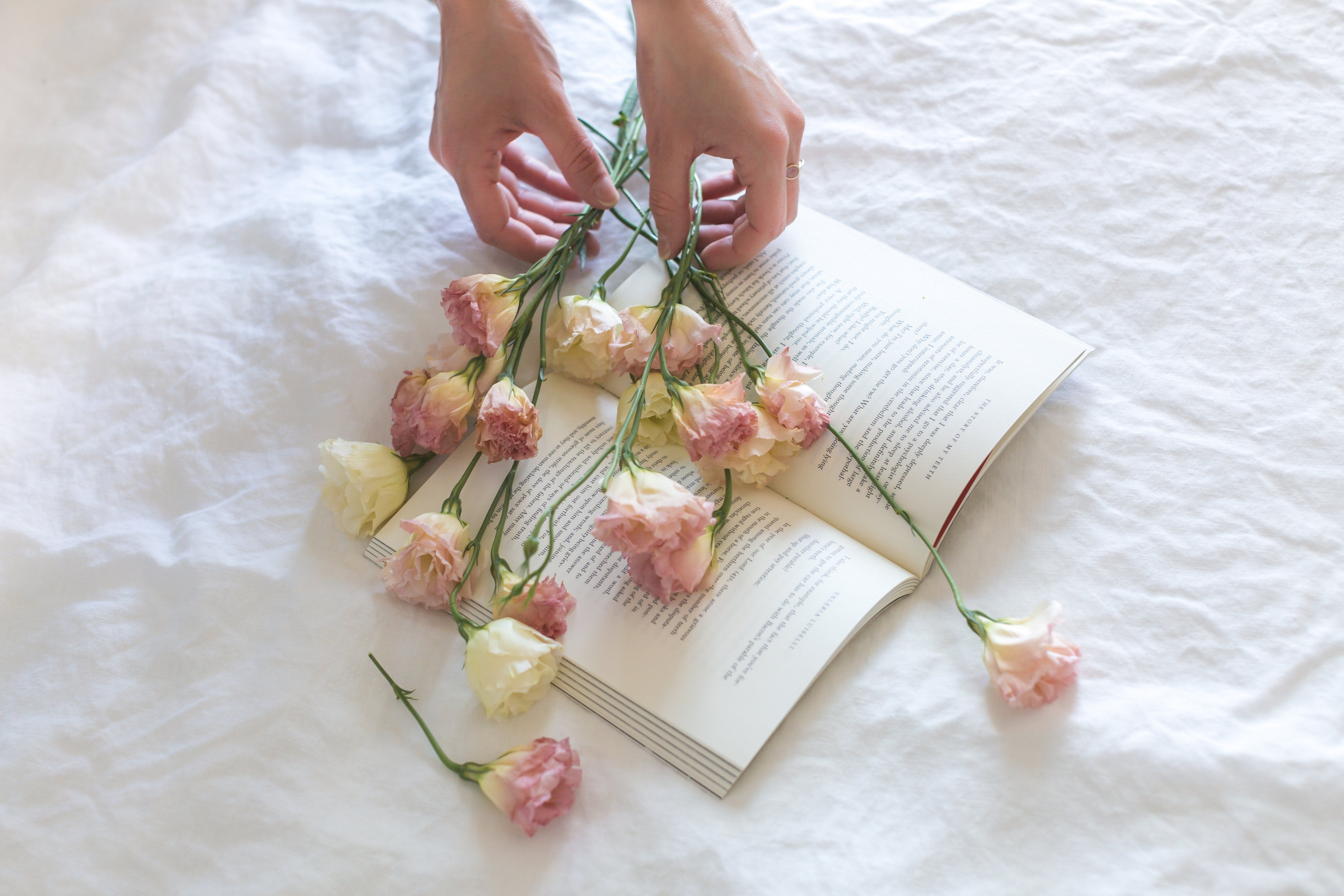Pink-and-white Roses on Top of Open Book Nestled on White Textile