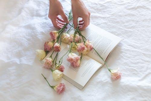 Ilmainen kuvapankkikuva tunnisteilla kädet, kaunis, kirja, kukka