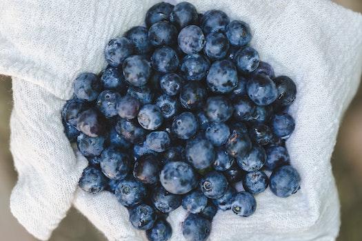 Free stock photo of blur, blueberries, fruit, fresh